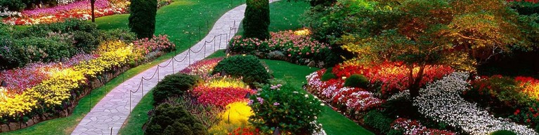 comprar-jardin