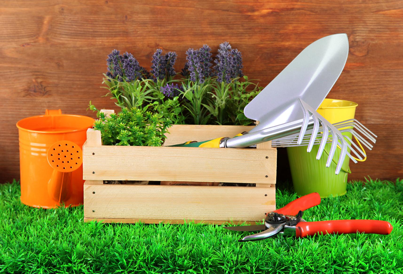 Comprar tijera poda tijera poda venta tijera poda for Casas para herramientas de jardin