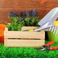Comprar herramientas de jardineria