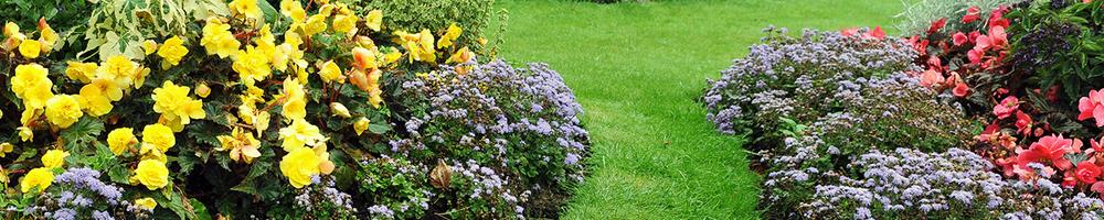 Útiles Jardín
