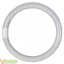 Tubo fluorescente circular tri