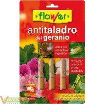 Insecticida geranios anti tala