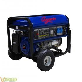 Generador gas. 11 cv 4kva 25lt